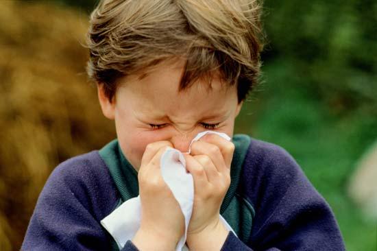 Sneezing with tissue